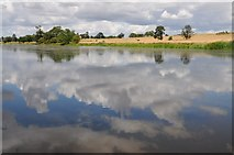 SO8843 : Reflections in Croome River by Philip Halling