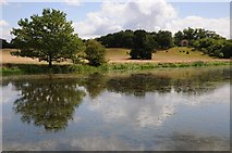 SO8843 : View across Croome River to Park Seat by Philip Halling
