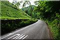SK1455 : Road into Dove Dale by Bill Boaden