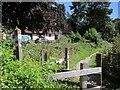 SY3293 : East Devon Way by the B3165 by Derek Harper
