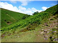 SO2233 : Path parallel to the Nant Bwch by Jonathan Billinger