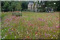 SE2754 : Wildflower meadow at RHS Garden Harlow Carr  by Graham Hogg