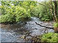 NN2001 : River Goil, Lochgoilhead by David P Howard