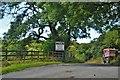 SM8923 : Entrance To Little Rhyndaston Quarry by Deborah Tilley