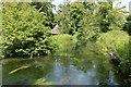 SU3327 : Upstream from the Bridge by Bill Nicholls