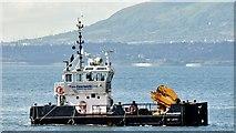 "J4186 : The ""Challenger of Leith"", Belfast Lough - August 2015(2) by Albert Bridge"