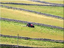 SD9771 : Mowing grass near Kettlewell by Graham Robson