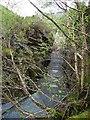SN7078 : Fish ladder, Afon Rheidol by Rudi Winter