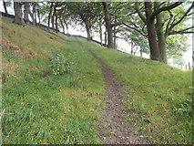 SE0424 : Footpath - Greystones Road by Betty Longbottom