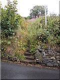 SE0424 : Footpath - John Naylor Lane by Betty Longbottom