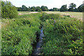 SU9961 : The Bourne near Mimbridge by Alan Hunt