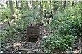 NY6128 : Acorn Bank Gypsum Drift Mine by Ashley Dace