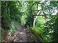 SJ6786 : Lymm Dam footpath by Dave Dunford