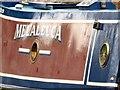 SJ9688 : Melaleuca at Marple by Gerald England
