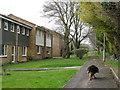 SP9111 : Oakley Lane, Tring by Chris Reynolds