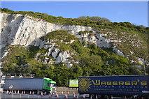 TR3341 : White Cliffs by N Chadwick