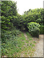 TL1313 : Coach Lane footpath to Rothamsted Park by Adrian Cable