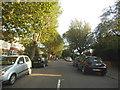 TQ2075 : Park Drive, East Sheen by David Howard