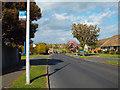 TQ4800 : Bus stop on Upper Belgrave Road near Lower Drive, Seaford by Robin Stott