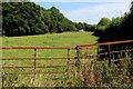 TR0853 : Pasture near Stile Farm by Chris Heaton
