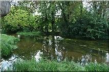 TF1309 : River Welland by Bob Harvey