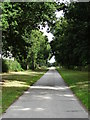 SK6381 : Thievesdale Lane with Coachroad Plantation to the right by Neil Theasby
