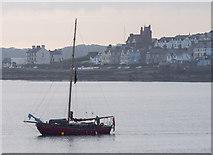 J5082 : Yacht 'Tramontana' off Bangor by Rossographer
