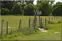 TQ5244 : Footpath junction, Penshurst Park by N Chadwick