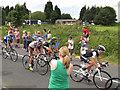 SE0721 : Tour de France: front riders by Stephen Craven