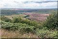SE8593 : Hole of Horcum, Yorkshire by Christine Matthews