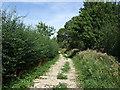 TL1137 : Farm track off Campton Road by JThomas