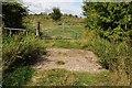 SO8935 : Farmland bridge by Philip Halling