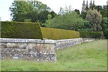 TQ5243 : Ha-ha, Penshurst Place by N Chadwick