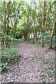 TG2739 : England Coast Path north of Trimingham by Julian Dowse