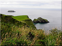 D0644 : Carrick-a-rede, County Antrim by Kenneth  Allen