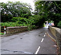 SN5601 : Heol y Parc roadway narrow across a bridge,  Llangennech  by Jaggery