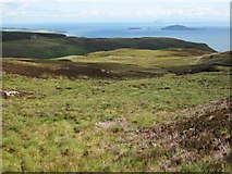 NR6106 : Moorland on the Mull of Kintyre by wrobison