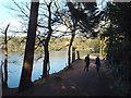 SP0997 : The dam, Bracebridge Pool, Sutton Park by Robin Stott