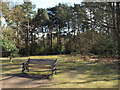 SP1097 : Seat with a view of Bracebridge Pool, Sutton Park by Robin Stott