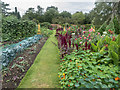 TQ1478 : Vegetables, Kitchen Garden, Osterley Park, London by Christine Matthews