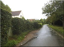 TL1614 : Leasey Bridge Lane, Wheathampstead by David Howard