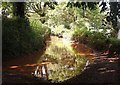 SX7859 : Flooded track, Peak Cross by Derek Harper
