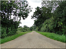 TL8063 : Drive to Croft's Place, Little Saxham by Adrian S Pye
