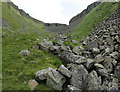 NY7426 : In High Cup Gill by Graham Hogg