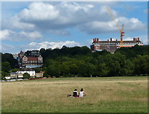 TQ1773 : Petersham Meadows near Richmond by Mat Fascione