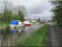 N1064 : Royal Canal at Coolnahinch & Lock 41, Co Longford by Colin Park