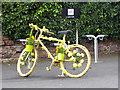 NY6137 : The yellow bikes of Melmerby (18) by Oliver Dixon