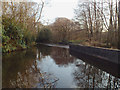 SP1195 : Outflow from Wyndley Pool, Sutton Park, looking upstream by Robin Stott