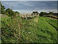 TL5365 : Bridge over Swaffham Bulbeck Lode by Hugh Venables