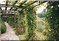 ST2428 : The rose walk by Bob Harvey